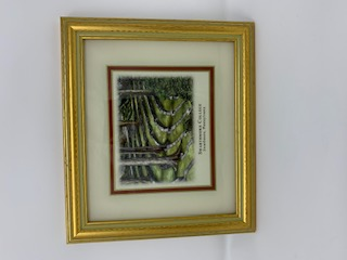 Image For Picture Framed Mini