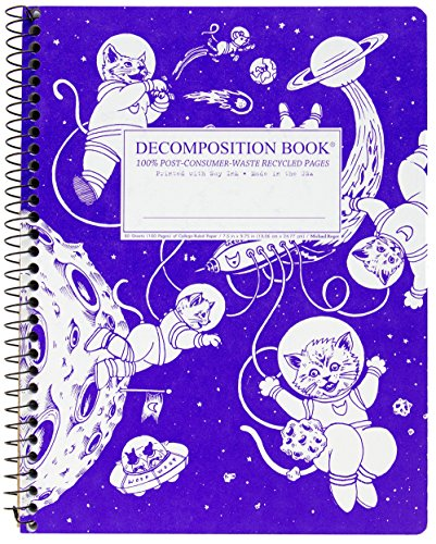 Image For Kittens in Space Decomposition Book